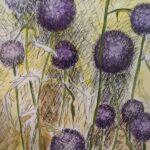 Allium in Lila