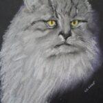 graues Katzengesicht