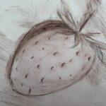 Zeichnung einer Erdbeerfrucht
