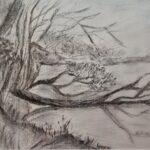 Baum liegt im See