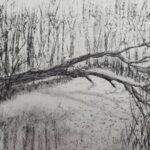 umgefallener Baum am Teich