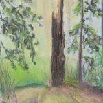 abgebrochener Baumstumpf auf einer Waldlichtung